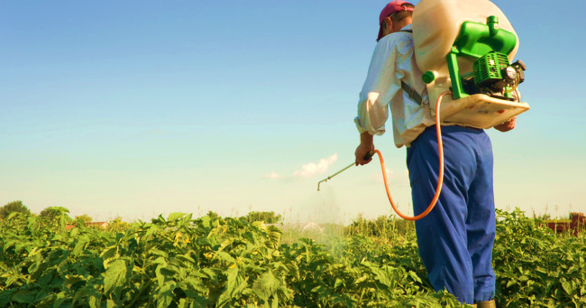 Mogán celebrará un curso de manipulador de productos fitosanitarios del 9 al 16 de diciembre